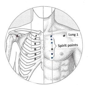 spirit points kamala quale moon and lotus acupuncture